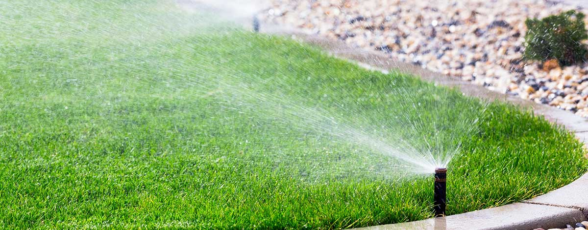 Watering restriction schedule for Marion County FL