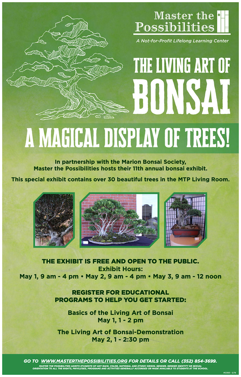 The Art of the Living Bonsai at Master the Possibilities